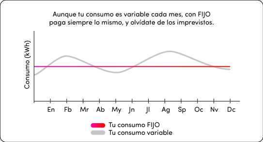 Gráfico de FIJO